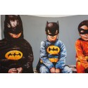 Fintan Magee - 3 bats and a Bird - limited