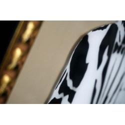 FRZ - Chelisa -  plexiglass