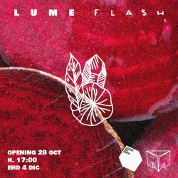 Lume - Flash Paper #1
