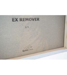 Kunstrasen - Ex Remover -...