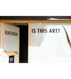 Kunstrasen - Is this Art? -...