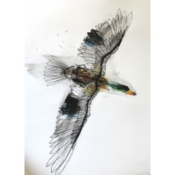 David Oliveira - Anatra Reale - limited giclèe hand finish by the artist