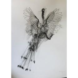 David Oliveira - Pavone - Original -limited giclèe hand finish by the artist